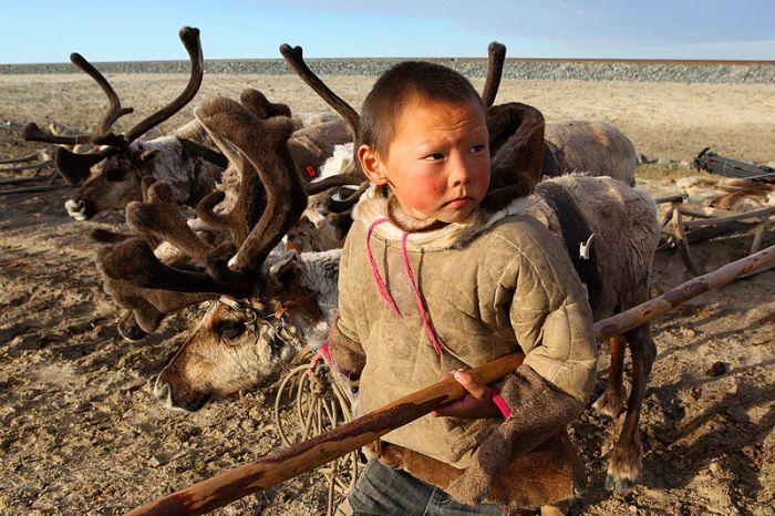 акари караки эвенки дикуша мальчик с оленями